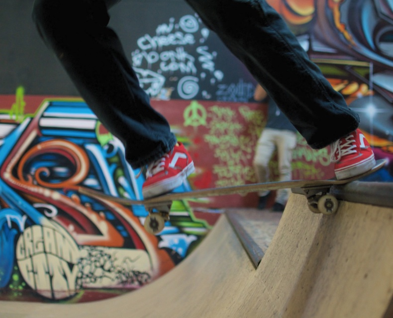 Vans Rowley Pro Vegan Skateboard Shoe
