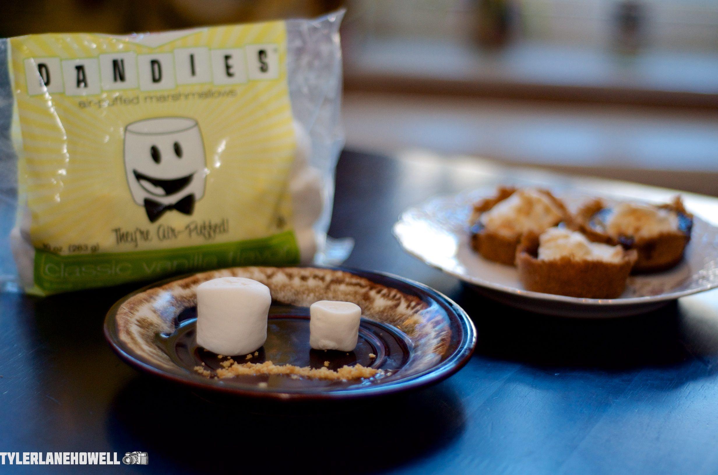 Dandies S'Mores dessert Vegan marshmallows