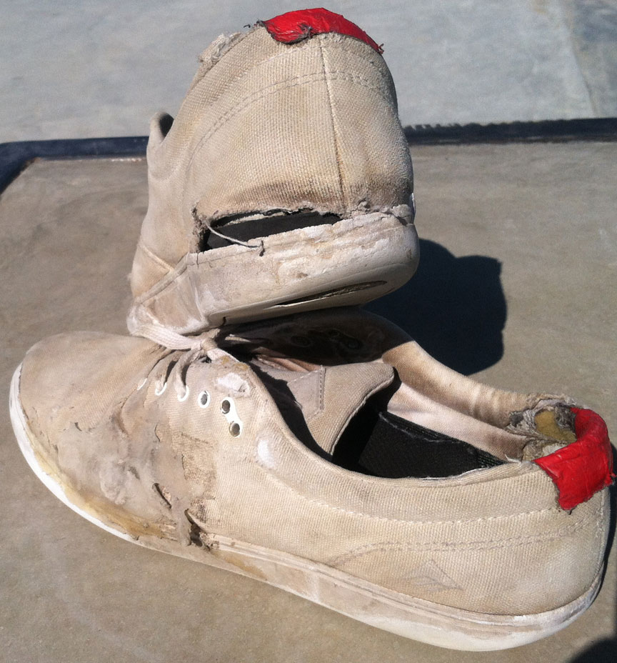 Andrew Reynolds Emerica Vegan Skateboard shoes